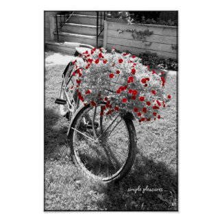 Black and White Vintage Bicycle Red Flowers Poster