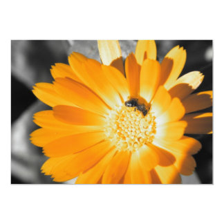 Black and White With Yellow Daisy 13 Cm X 18 Cm Invitation Card