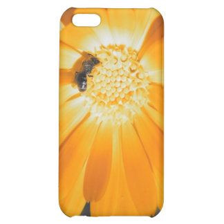 Black and White With Yellow Daisy iPhone 5C Cases