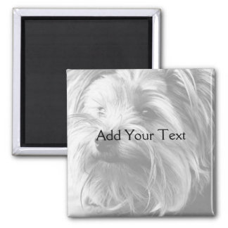 Black and White Yorkshire Terrier Yorkie Square Magnet