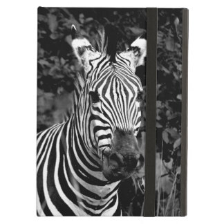 Black and white zebra case for iPad air