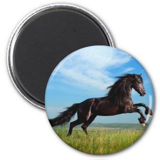 black and wild Stallion Rearing Horse 6 Cm Round Magnet