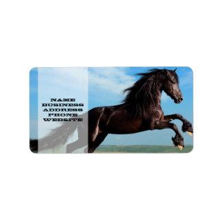 black and wild Stallion Rearing Horse Address Label