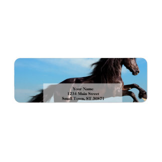 black and wild Stallion Rearing Horse Return Address Label