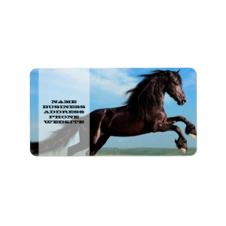 black and wild Stallion Rearing Horse Address Label
