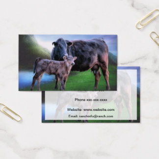 Black Angus Cow and Calf Business Card