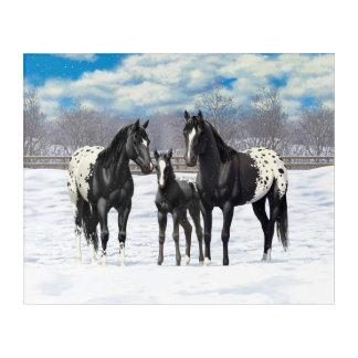 Black Appaloosa Horses In Snow Acrylic Print