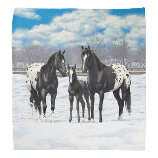 Black Appaloosa Horses In Snow Bandana