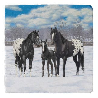 Black Appaloosa Horses In Snow Trivet