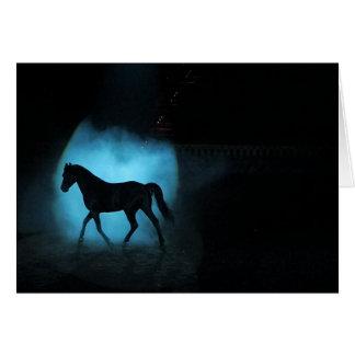 Black Arabian Stallion Card