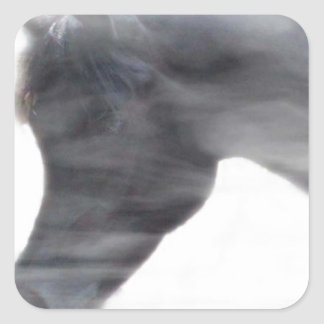Black Arabian Stallion in the Fog Square Stickers