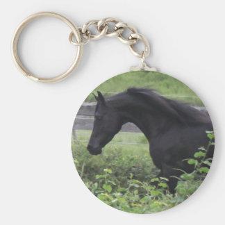 Black Arabian Stallion Keychains