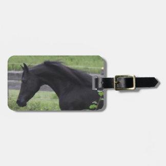 Black Arabian Stallion Tags For Bags