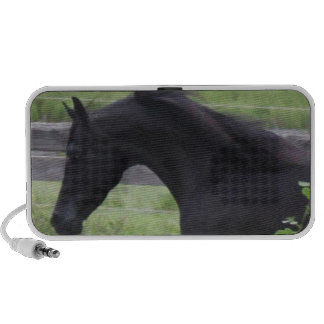 Black Arabian Stallion iPod Speakers
