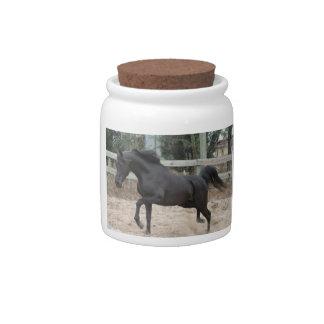 Black Arabian Stallion Candy Jars