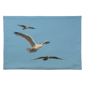 Black-backed gull placemats