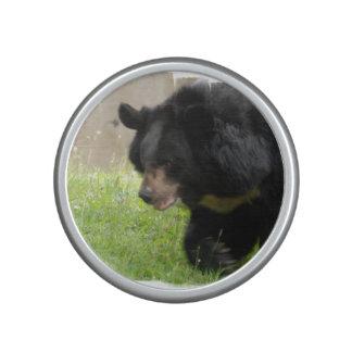 Black Bear Bluetooth Speaker