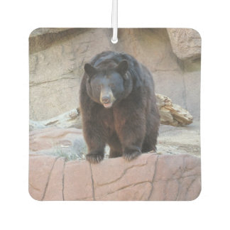Black Bear Car Air Freshener
