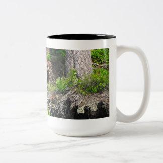 Black Bear & Cub Mug