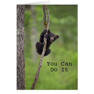 Black bear cub playing, Tennessee Card