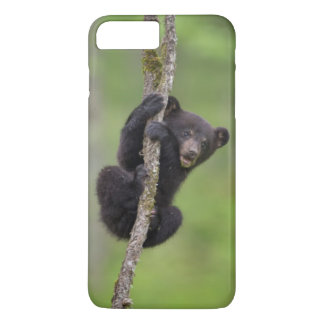 Black bear cub playing, Tennessee iPhone 8 Plus/7 Plus Case