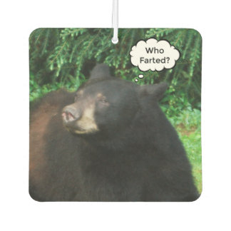 "Black Bear - ""Cubby Who Farted?"""