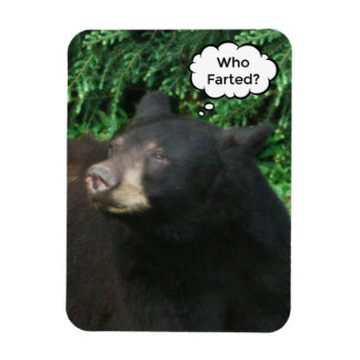 "Black Bear - ""Cubby Who Farted?"" 3"" X 4"" Rectangular Photo Magnet"