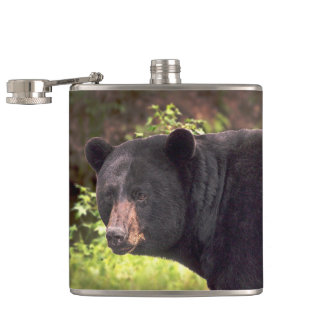 Black Bear Hip Flask