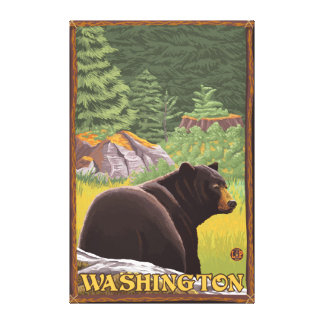 Black Bear in Forest - Washington Canvas Print