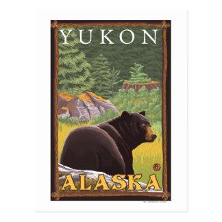 Black Bear in Forest - Yukon, Alaska Postcard