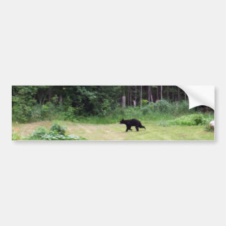 Black Bear Running Across a Back Yard Bumper Sticker