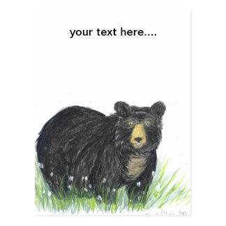 Black bear teddy bear postcard