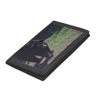 Black Bear Wallet