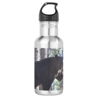 Black Bear Water Bottle
