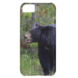 Black Bear Wild Animal Bear-lover iPhone 5C Case