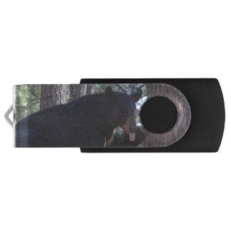 Black Bears USB Flash Drive