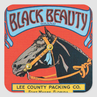 Black Beauty Horse vintage Label Stckers
