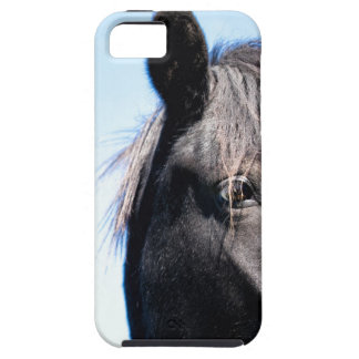 Black Beauty iPhone 5 Cover