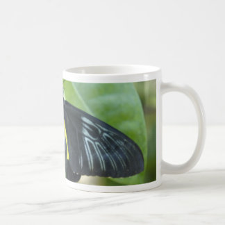 Black Beauty Coffee Mugs