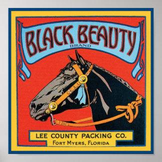 Black Beauty Vintage Crate Label - Horse Poster