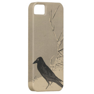 black bird in snow circa 1890 - 1920 iPhone 5 Case