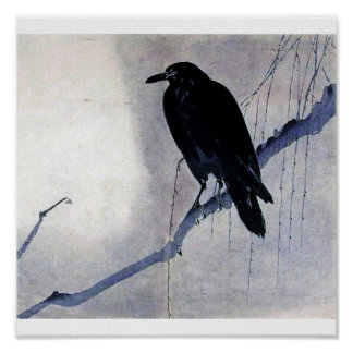 Black bird raven antique art poster