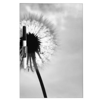 Black blank dandelion Black and White Dandelion Dry-Erase Whiteboards