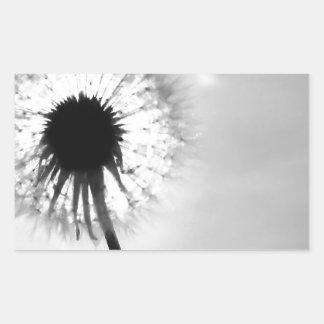 Black blank dandelion Black and White Dandelion Rectangular Sticker