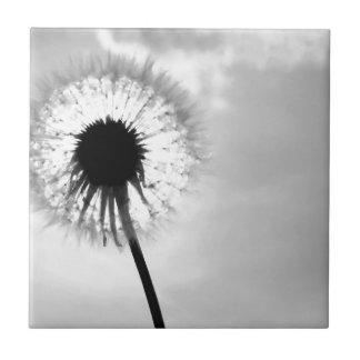 Black blank dandelion Black and White Dandelion Small Square Tile