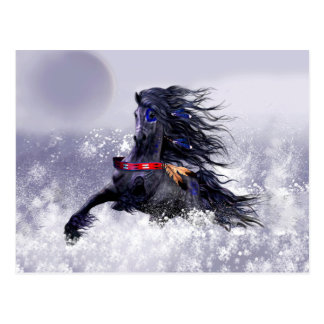 Black Blue Majestic Stallion Indian Horse in Snow Postcard