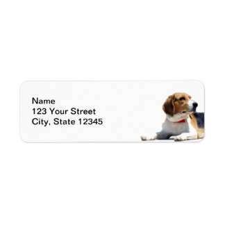 Black Brown and White Beagle Dog Return Address Return Address Label