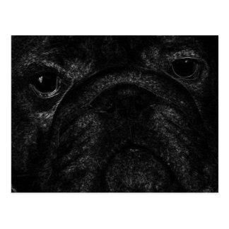 Black bulldog postcard
