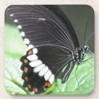 Black Butterfly Cork Coasters
