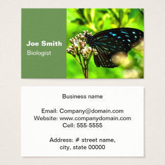 Black Butterfly in Green Business Card